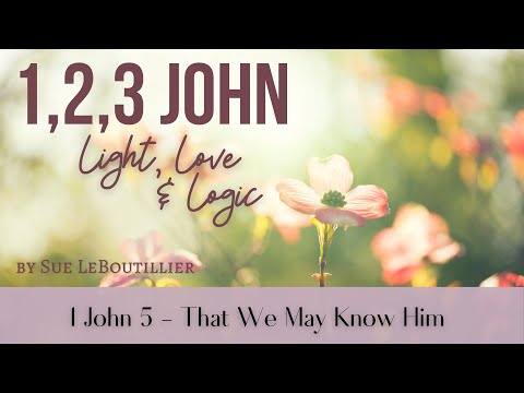 1 John 5  - That We May Know Him (Women of the Word)
