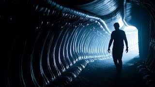 Kermode Uncut: Alien Ancestry