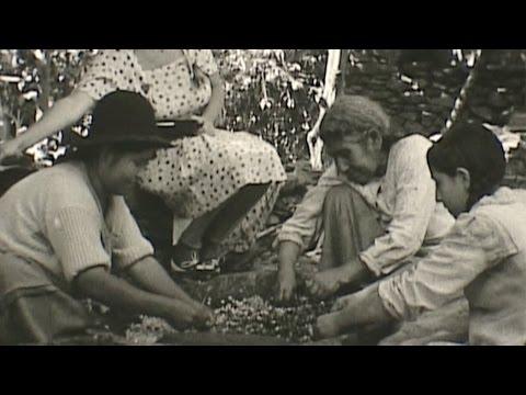 1936 South America