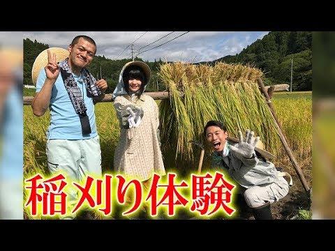 ひよっこの舞台で稲刈り体験。カミナリ、根本凪が茨城県のフォトジェニックなスポットを旅する「#いばジェニック写真旅(仮)」#6