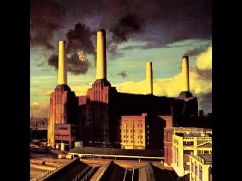Pigs (Three Different Ones) - Pink Floyd (w/Lyrics)