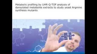 Metabolomics on Yeast Arginine Synthesis Pathway Mutants by ESI-UHR-TOF