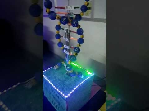 DNA double helix rotation model..