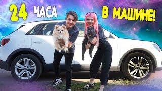 24 часа В МАШИНЕ! ПУТЕШЕСТВИЕ С КОШКОЙ И СОБАКОЙ НА МАШИНЕ! Кошке Баттерс СТАЛО ПЛОХО!