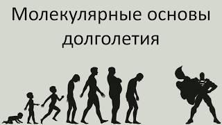 видео: Молекулярные основы долголетия - Александр Панчин