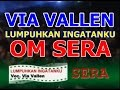 Download Lagu Mp3 Lumpuhkan Ingatanku Via Vallen - Dangdut SERA MP3