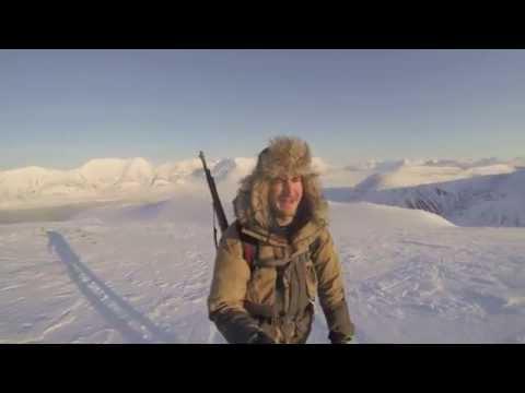Svalbard - The Arctic