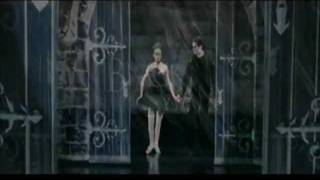 Black Swan~~Wake Up & Smell The Coffee[The Cranberries]