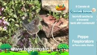 Marmotte e stambecchi al Parco Nazionale dello Stelvio - Documentari per bambini di Coccole Sonore