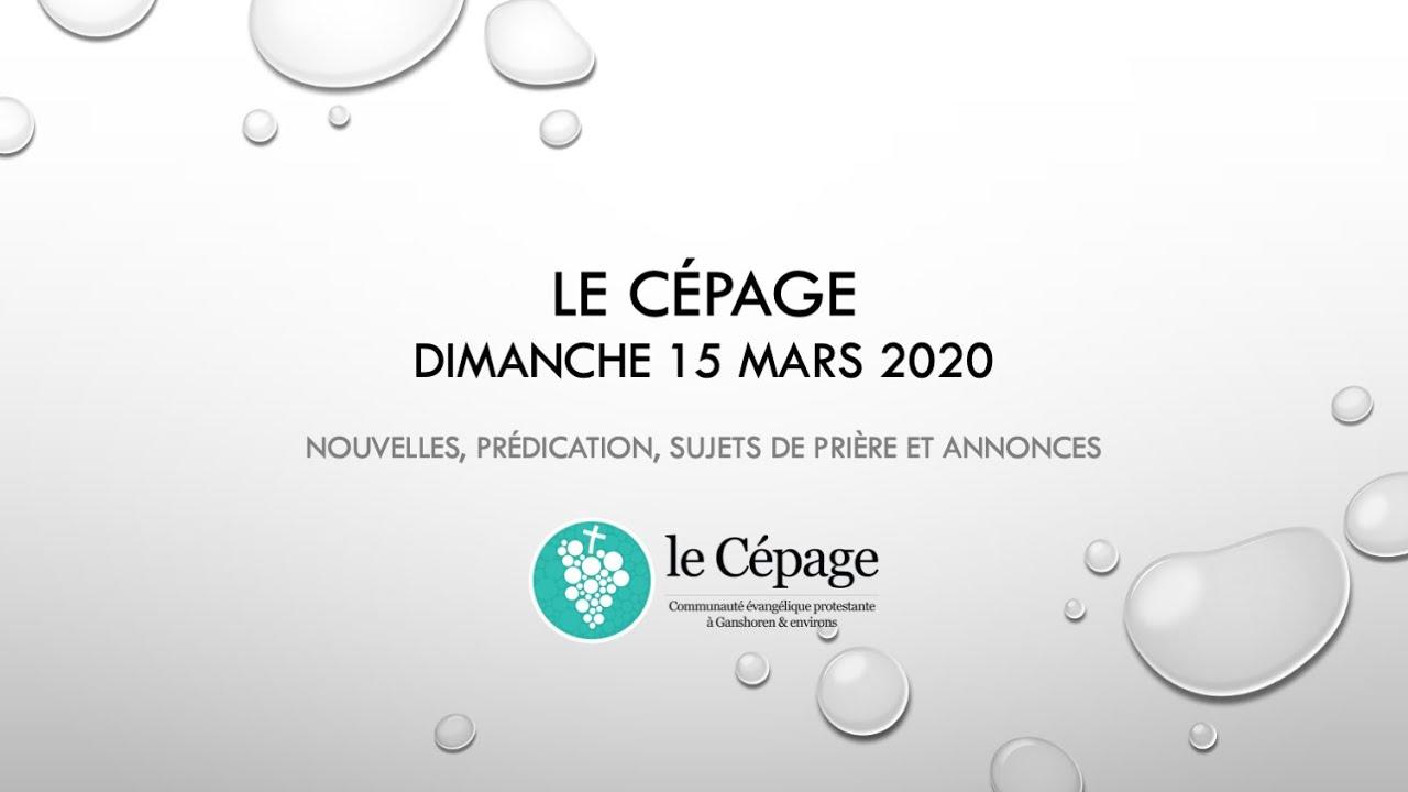 En l'absence de rencontre - 15 mars 2020