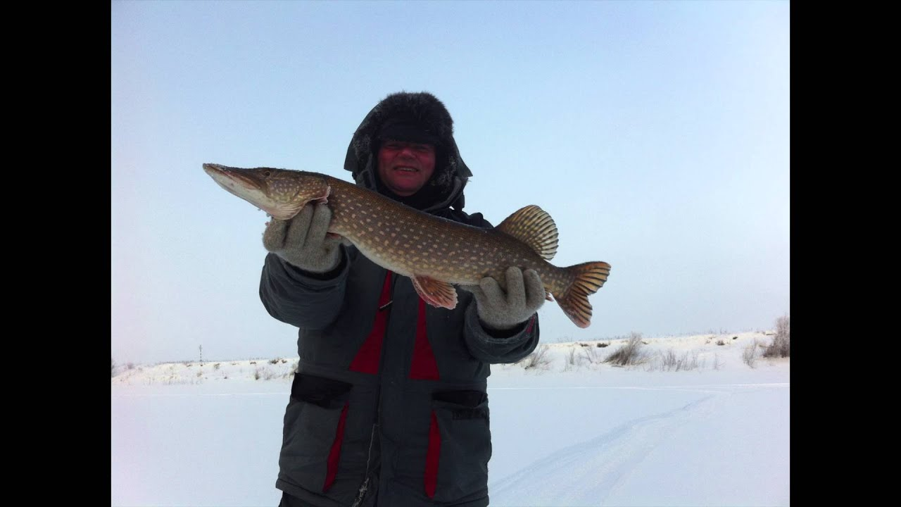 Рыбалка, Река Сосьва (Свердловская область) Февраль 2016