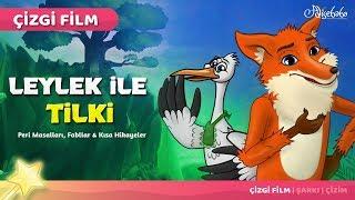 Adisebaba Çizgi Film Masallar - Leylek ile Tilki