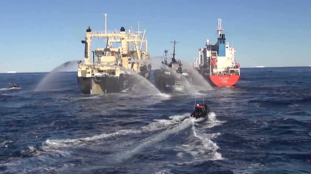 Nisshin Maru Repairs 2012