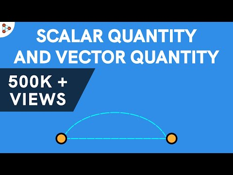Physics - Scalar Quantity and Vector Quantity
