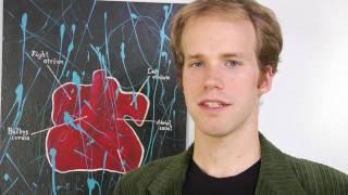 Chemistry & Biology : How to Make Salt Crystals