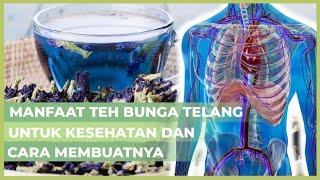 Pernah Minum Teh Bunga Telang Belum? Teh Biru Ini Punya Beragam Manfaat Untuk Tubuh Kamu Loh!