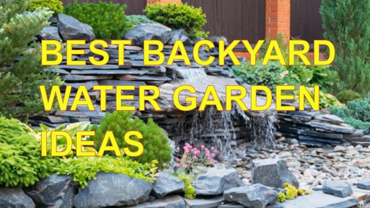 Best Backyard Water Garden Ideas - YouTube