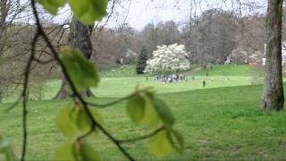 Hampstead Heath: North London's most beautiful Park