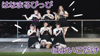 【A-MUSE】Hanamaru Pippi wa Yoiko Dake はなまるぴっぴはよいこだけ 踊ってみた【A応P】