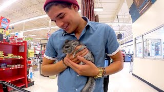 One of Alex Wassabi's most viewed videos: MY FiRST PET EVER!!
