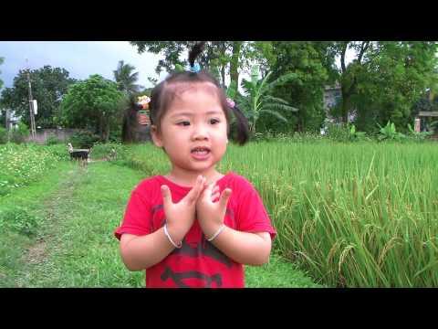 Chi ong nau nau_Ai chang3