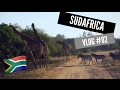 SAFARI EN EL PARQUE KRUGER 🐘🦏🐆  | Sudafrica Vlog #02