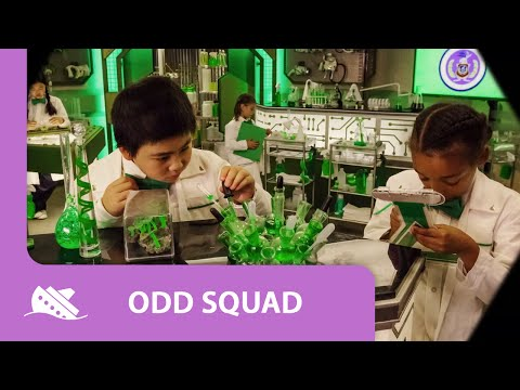 Odd Squad Show Opening