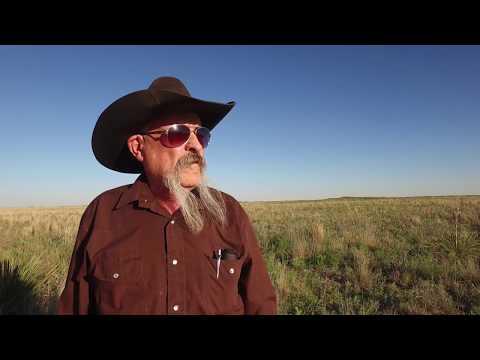 Conservation Media® - Lesser Prairie Chicken Rangewide Plan - W. Assoc. Of Fish & Wildlife Agencies
