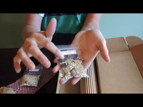 Unboxing Plants from Ebay Seller LadyBugs1010