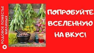Откройте мир растений для себя, ведь в них есть все для нашего здоровья!