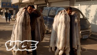 China's Obsession with Mink Coats thumbnail