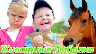 Животные для детей | Рыбалка с детьми. Дети поймали рыбу. Лошадка
