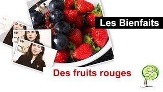 les fruits rouges : BIENFAITS🍇🍒