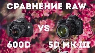 Canon 600D vs Canon 5D mkIII - cравнение RAW файлов. Сравнение дорогой и дешевой камеры.(Сколько людей столько и мнений. Мнение лентяя по поводу обработки и пример самой этой обработки. Не претенд..., 2016-04-08T04:12:45.000Z)