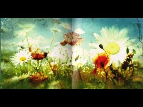XTC - Dear God _ Dying -Skylarking Correct  Polarity CD