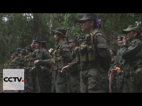 FARC Agreement: Rebel group allows minors under 15 to leave