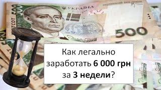 Как заработать 300 000 грн за 2 недели с помощью автозвонков? | Кейс EVE.calls
