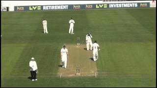 Yorkshire County Cricket Club's Adil Rashid bringing up his hundred at Taunton - April 14