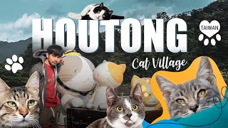 หมู่บ้านหูต่ง ดงแมวเหมียว Houtong Cat Village (ไต้หวัน)