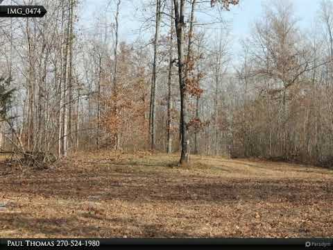 Land For Sale In Kentucky - Adair County - 187 Acres