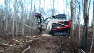 TL250 clearing trees Thumbnail