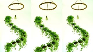 Spiral Hanging Garden With Coconut Shells Evergreen Turtle Vine Garden Idea By Botanical Woman Youtube
