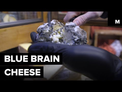This Little Swiss Cheese is Called Blue Brain for a Reason