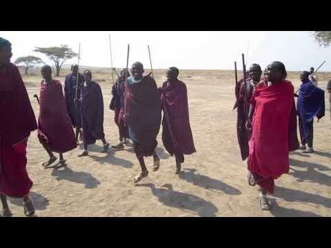 African Wildlife with SAFARI VENTURES