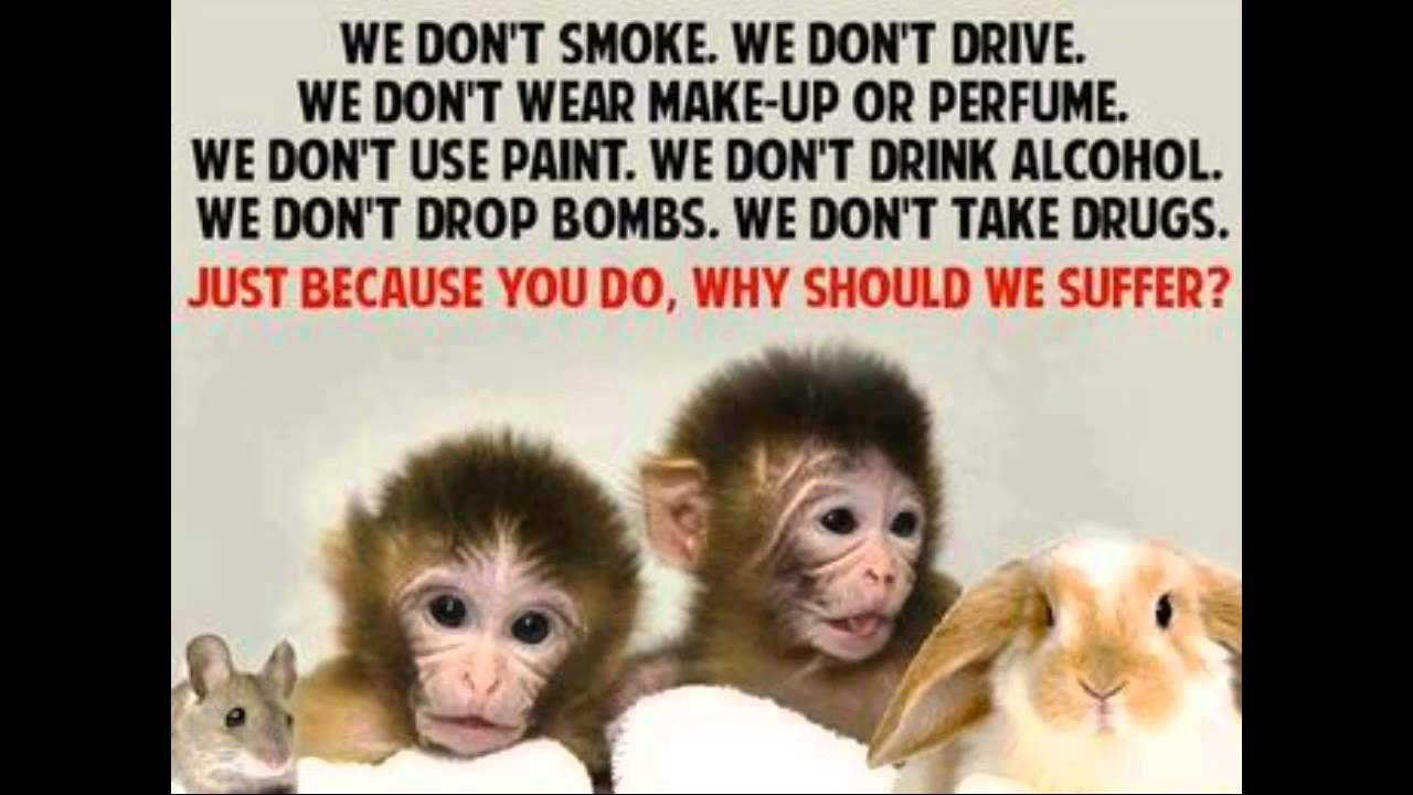 a research on the need for animal experimentation One of the most, if not the most, contentious issues in science is the use of animals in research scientists experiment on animals for a host of different reasons.