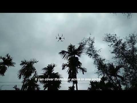 How drones help areca nut farmers