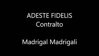 Video Adeste Fidelis   Contralto download MP3, 3GP, MP4, WEBM, AVI, FLV Agustus 2018
