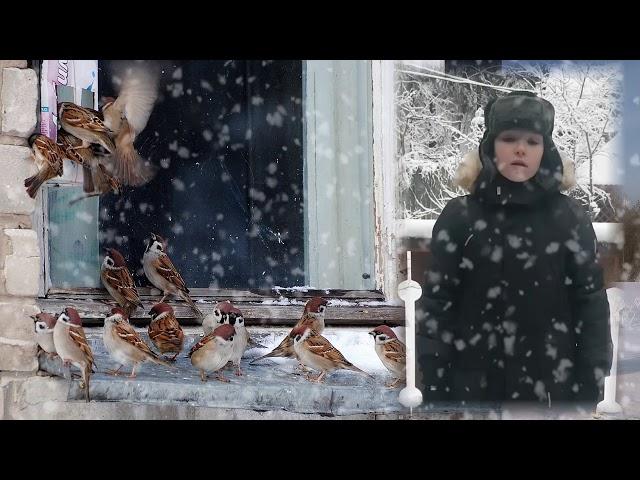 Изображение предпросмотра прочтения – КонстантинЗелкин читает произведение «Поёт зима— аукает…» С.А.Есенина