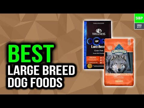 Best Large Breed Dog Foods 2020 (Top 5 Picks)