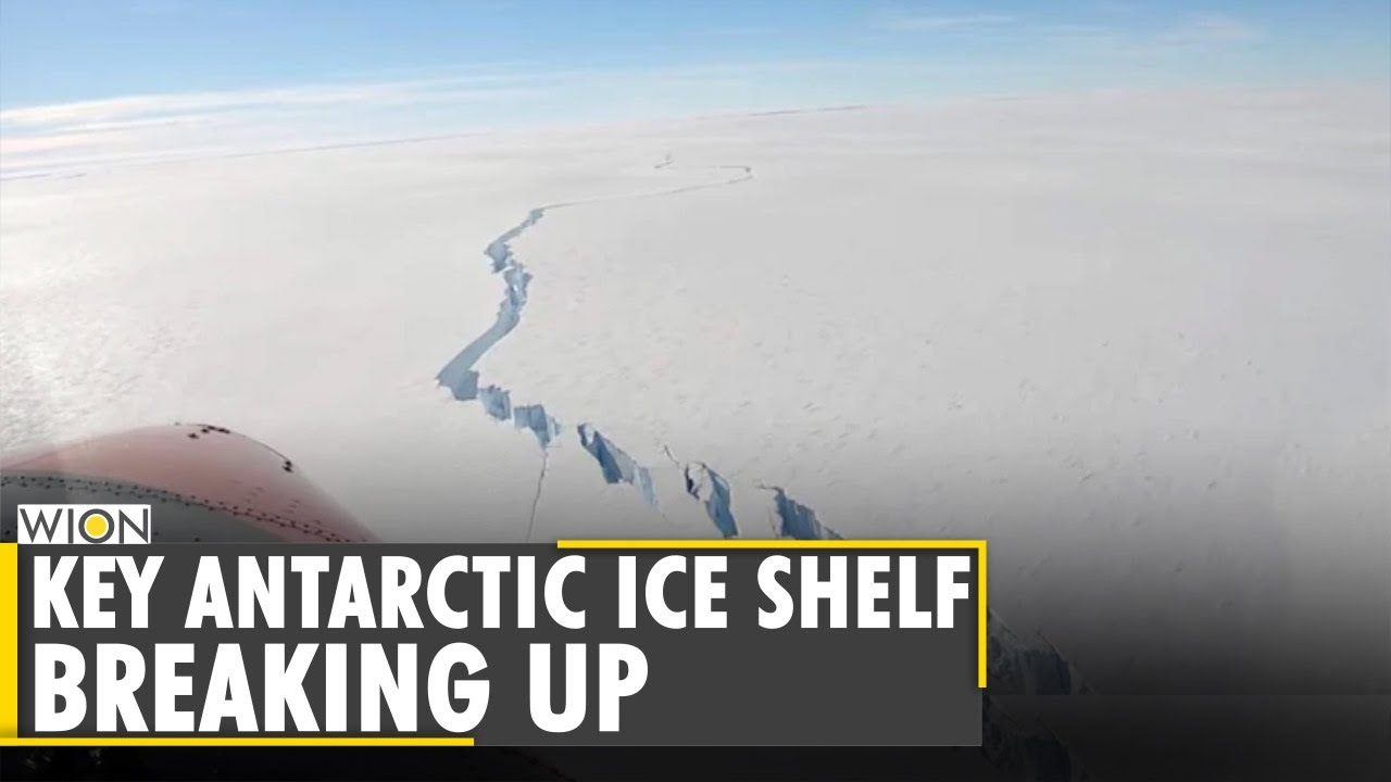 Study: Antarctic ice shelf is breaking up faster than expected   Pine Island Glacier   Latest News - WION